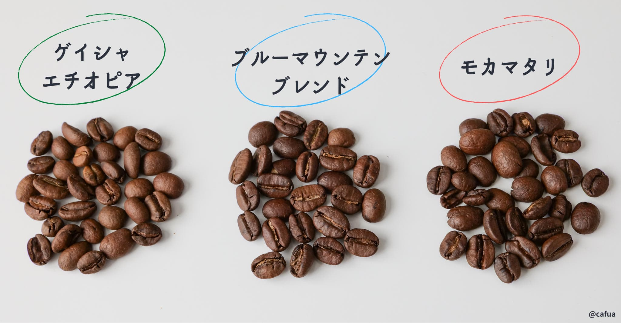 豆3種比較