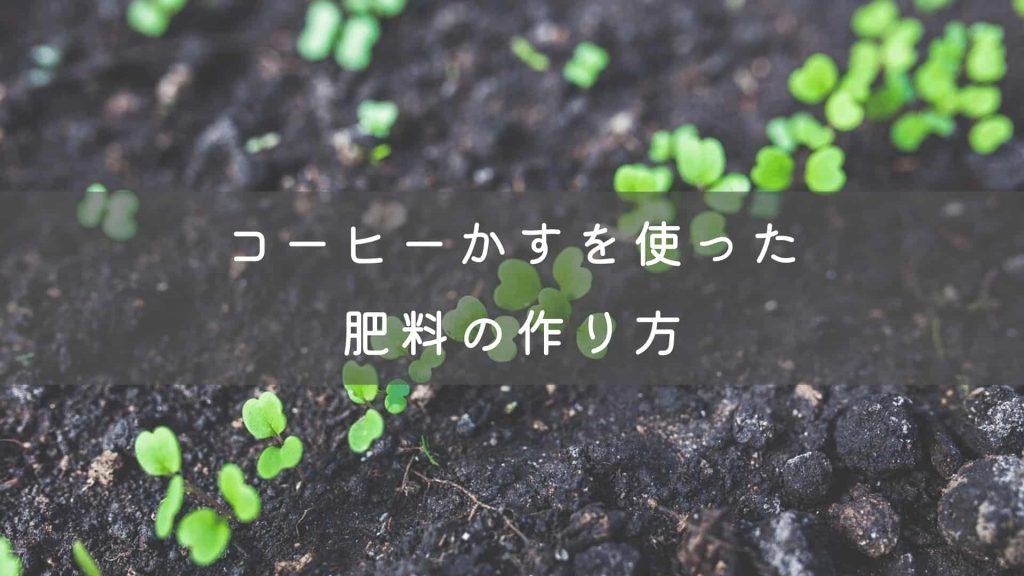 【簡単】コーヒーかすを使った肥料の作り方