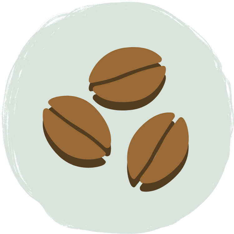 カテゴリ:コーヒー豆