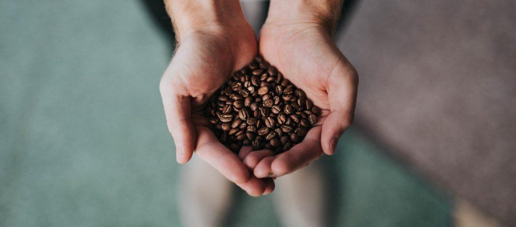 手に持ったコーヒー豆