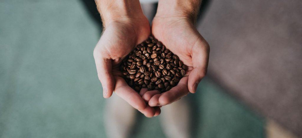 コーヒー豆を手に持つ